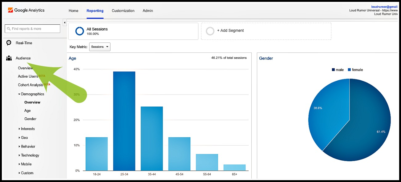 Google-Analytics-demographics-overview-navigation
