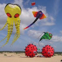 Best Kites For Kids and Children