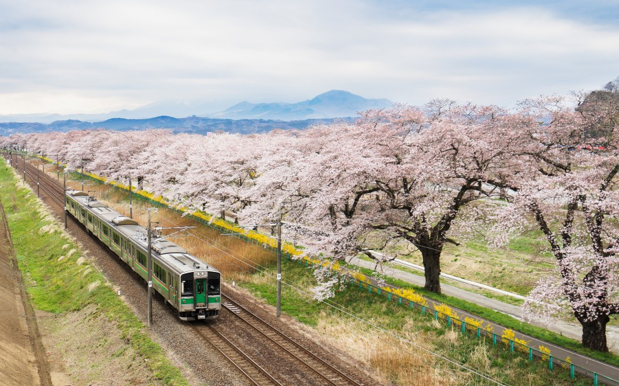 900 Japan Train AFotolia 101913572