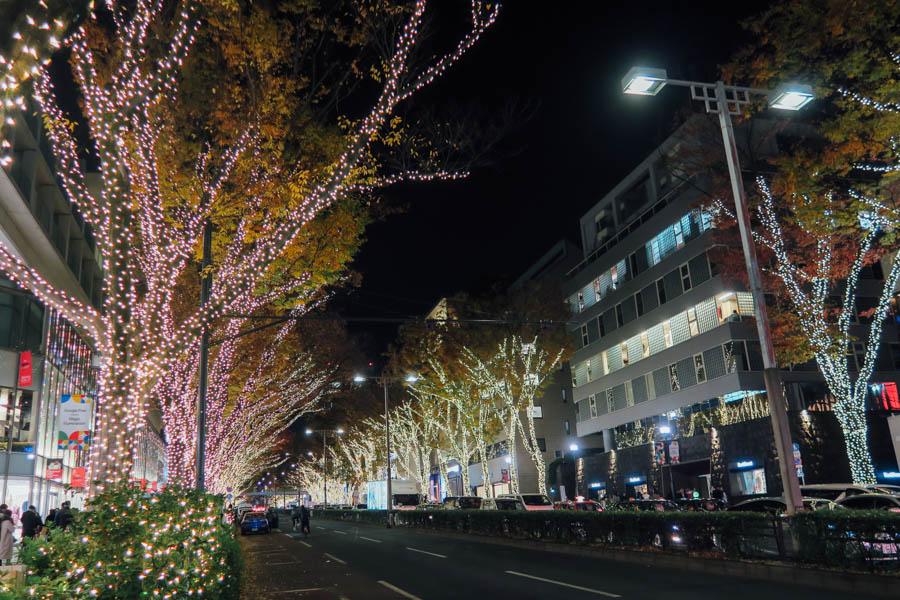 東京點燈 聖誕 表參道櫸木大道