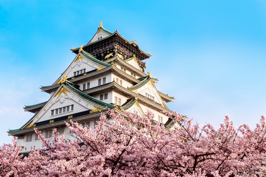 Japan Osaka Osaka Castle 大阪城櫻花 Osaka Castle Cherry Blossoms Ashutterstock 276147146