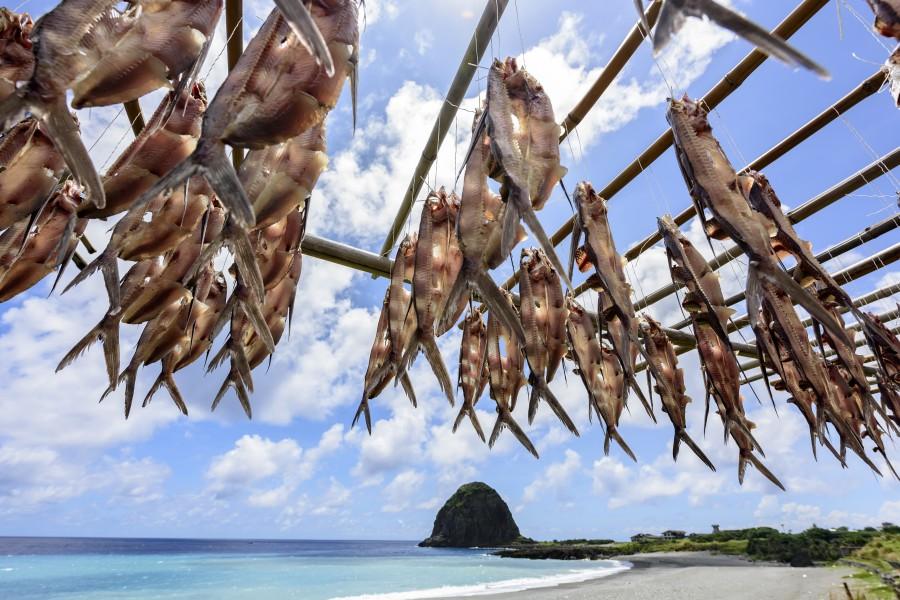 蘭嶼達悟族飛魚季