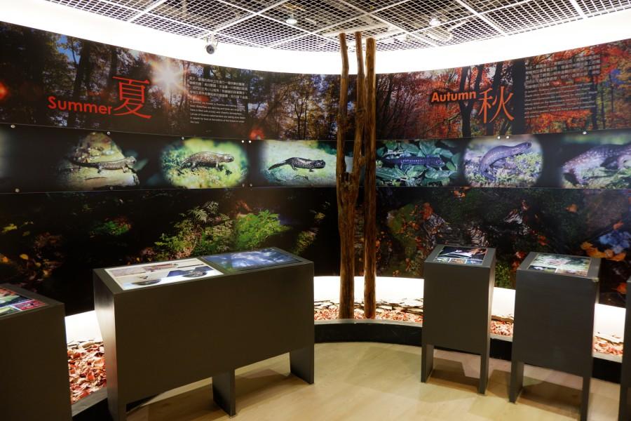 雪霸國家公園 觀霧山椒魚生態中心