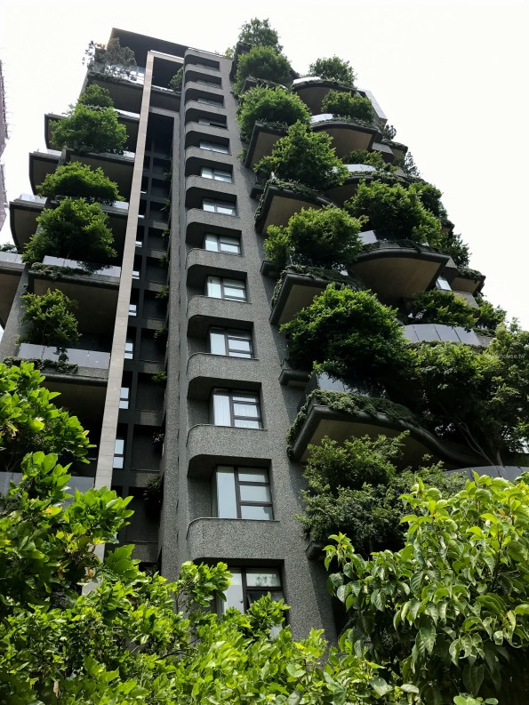 『半畝塘 若山』城市造山・節氣生活 5