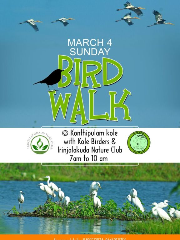 Konthipulam BirdWalk, 4 March 2018