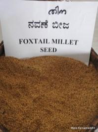 തിന (Foxtail Millet) വിത്ത്