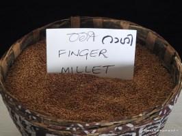റാഗി (Finger Millet)