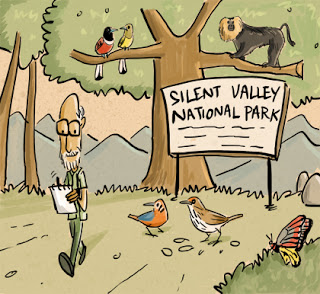 An Illustrated Ode to the Birdman of India – Green Humour