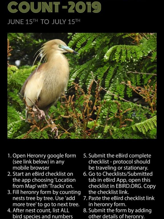 Kerala Heronry Survey 2019