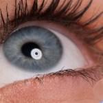 weiche Kontaktlinsen bei Kontaktlinsen-Direktversand
