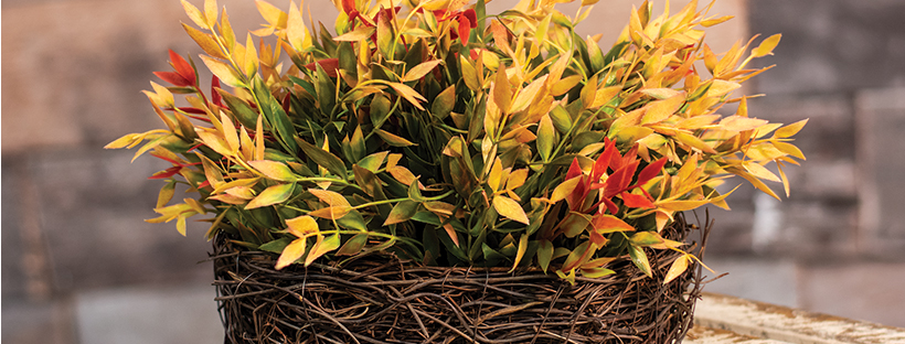fall style angel vine basket