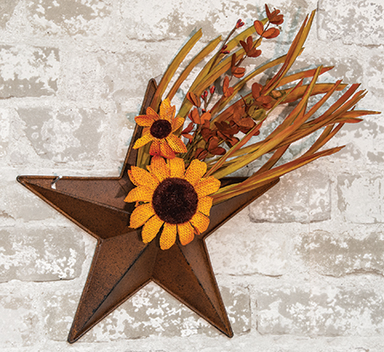 rusty star wall pocket