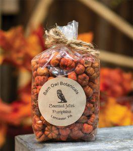 scented pumpkins
