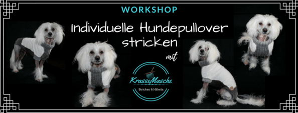 hundepullover online workshop
