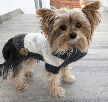 Mausi´s *Soft Pearl* Hundepullover