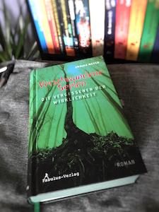 Verschwundene Seelen Book Cover