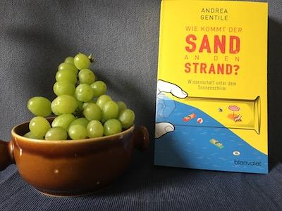 Wie kommt der Sand an den Strand? Wissenschaft unter dem Sonnenschirm Book Cover
