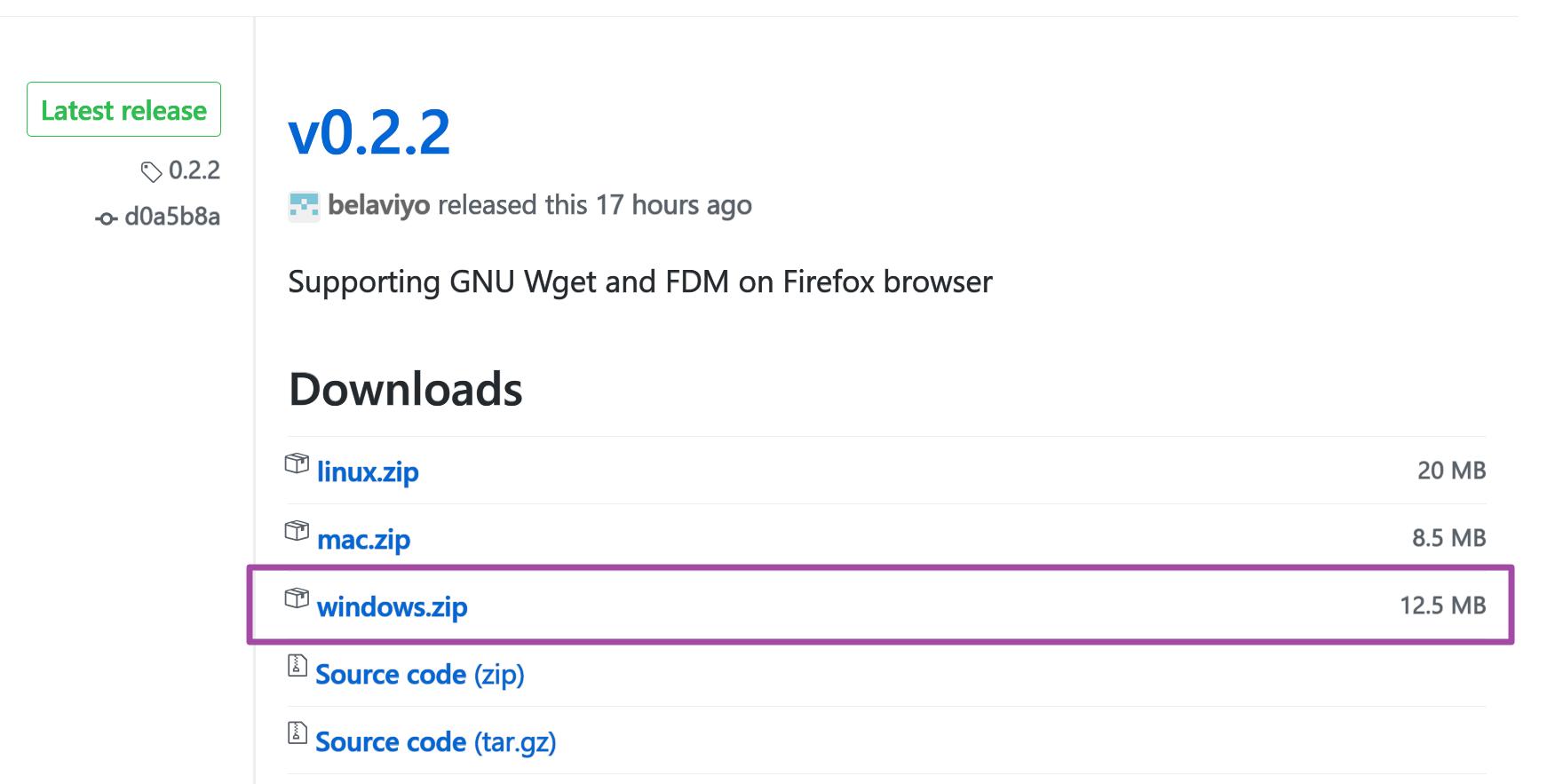 下載 idm 用 native client