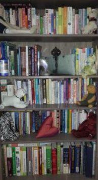 bookshelf 3 cropped