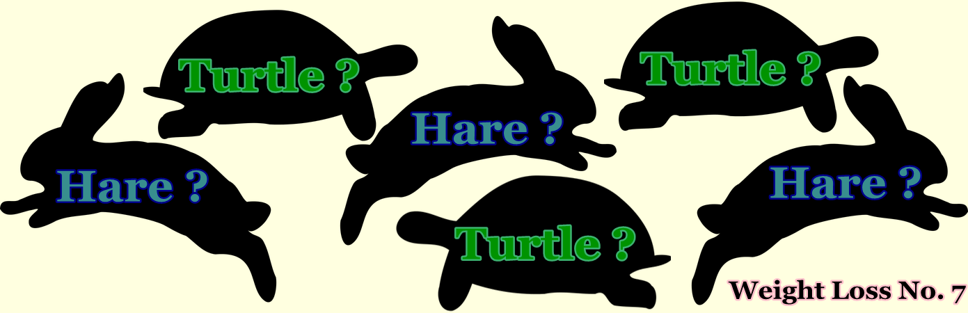 What Game Plan… the Turtle or the Hare? – Weight Loss No. 7