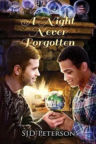 A Night Never Forgotten by SJD Peterson | reading, books