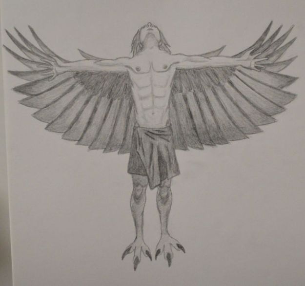 Sketch of a Male Harpy (a bare-chested man wearing a wrap skirt with feathered wings and talon feet