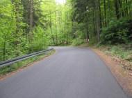Sattgrüne Wälder