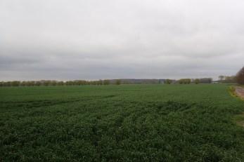 Bedecktes Brandenburg