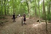Kopfsteinpflaster im Wald bei Glienicke
