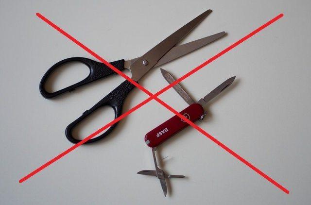ножницы в ручной клади