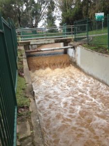 Catchment channel leading to the Torrens at Drage Reserve, Felixstow.
