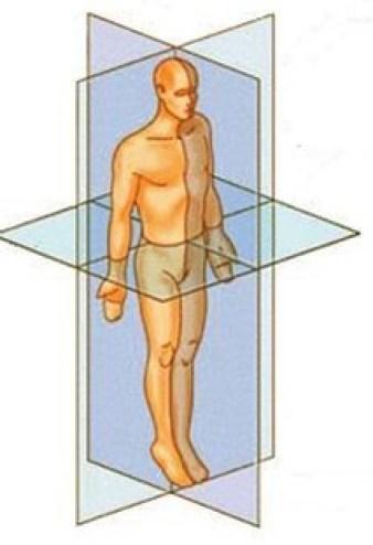 Kyusho Jitsu Quadrant Theory