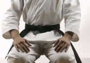 Kyusho Jitsu Black Belt Courses