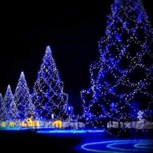 Kyusho Christmas Celebration