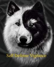 Self Defense means Vigilance! Crime Rates, Violent Crime on the Rise