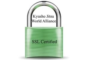 Kyusho Jitsu & SSL Security
