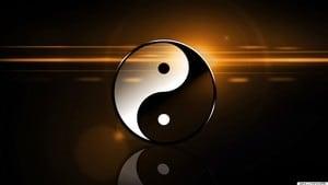 Kyusho Yin-Yang Theory