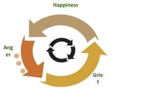 Kyusho Cycle of Emotions