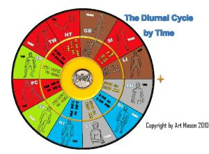 The Kyusho Jitsu 24 Hour Diurnal Cycle