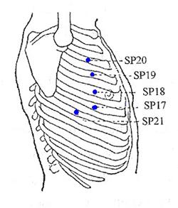 Pressure Point Spleen 21