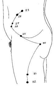 Pressure Point GB-31 - the Charley Horse Pressure Point on the leg