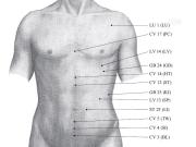 Kyusho Jitsu Alarm Points - Mastering Pressure Point Study