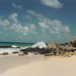 Barbados-Meg-Lessard