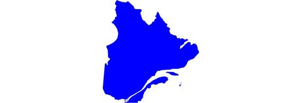 Analyse des services d'hygiène et salubrité du réseau de la santé au Québec