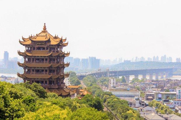 Wuhan 2019-nCoV