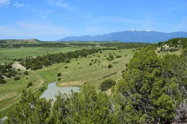 Meadowbrook Ranch Nestled in Scenic Colorado Foothills