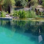 Environment global warming eco friendly ecology for Swimming pool design new zealand