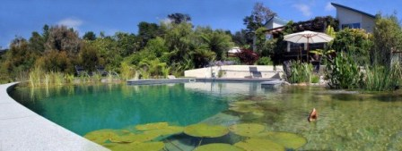 Eco friendly swimming pools nz design auckland wellington for Pool design nz