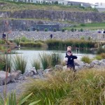 Auckland city's Maungarei Springs Wetland opens