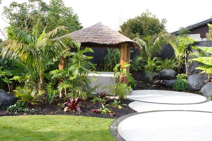 Find Ideas Search Results Blog Forum Gardening